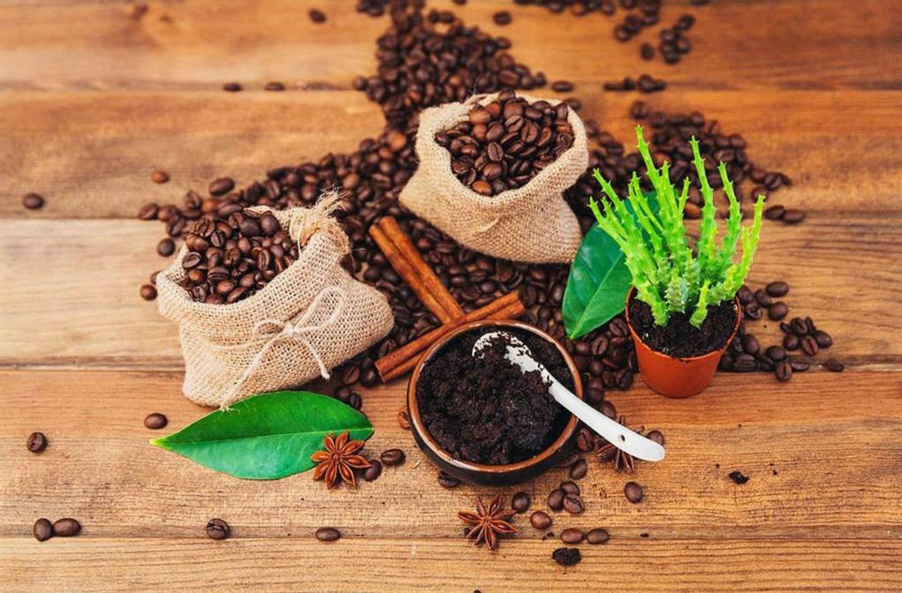 Cách khử mùi hôi giày bằng cafe cực hiệu quả