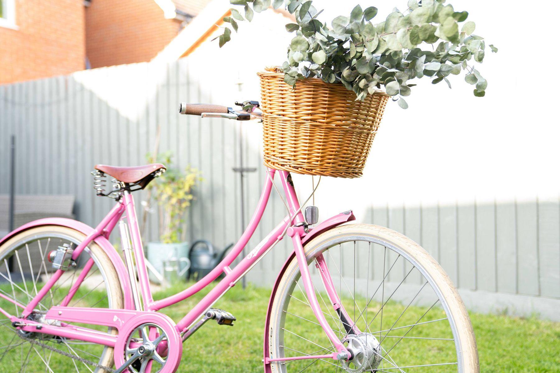 vélo rose avec des feuilles dans le panier