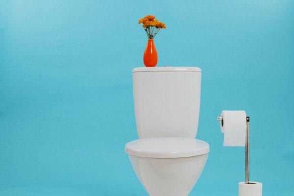 Cách dọn nhà vệ sinh nhà mới xây giúp khử mùi sơn hiệu quả