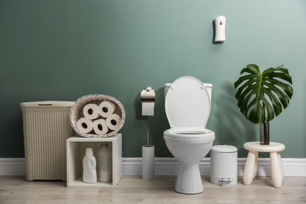 8 Tips and Tricks for Efficient Toilet Cleaning shutterstock 1109907974