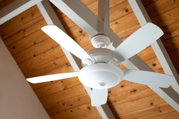 A Dust-Free Ceiling Fan Can Make Your Life a Breeze
