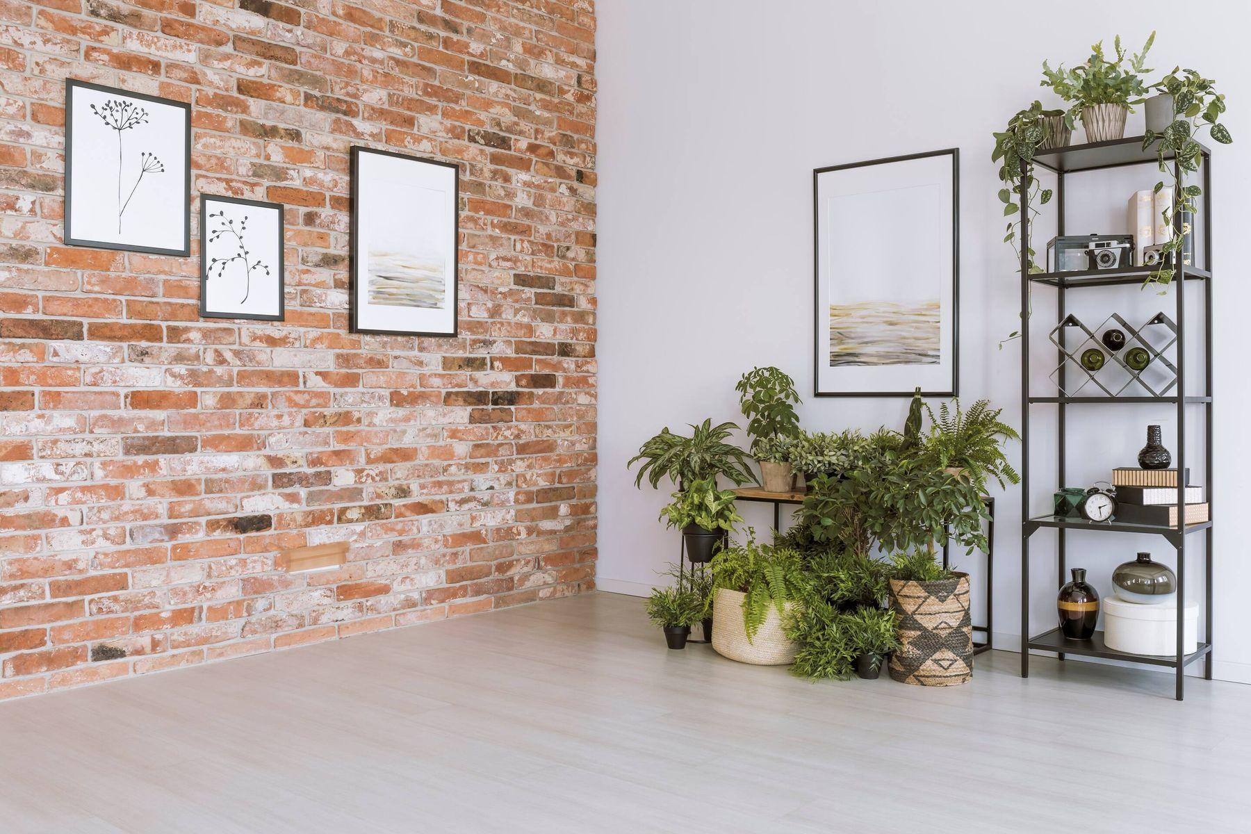 Mẫu trang trí phòng khách nhà ống đơn giản