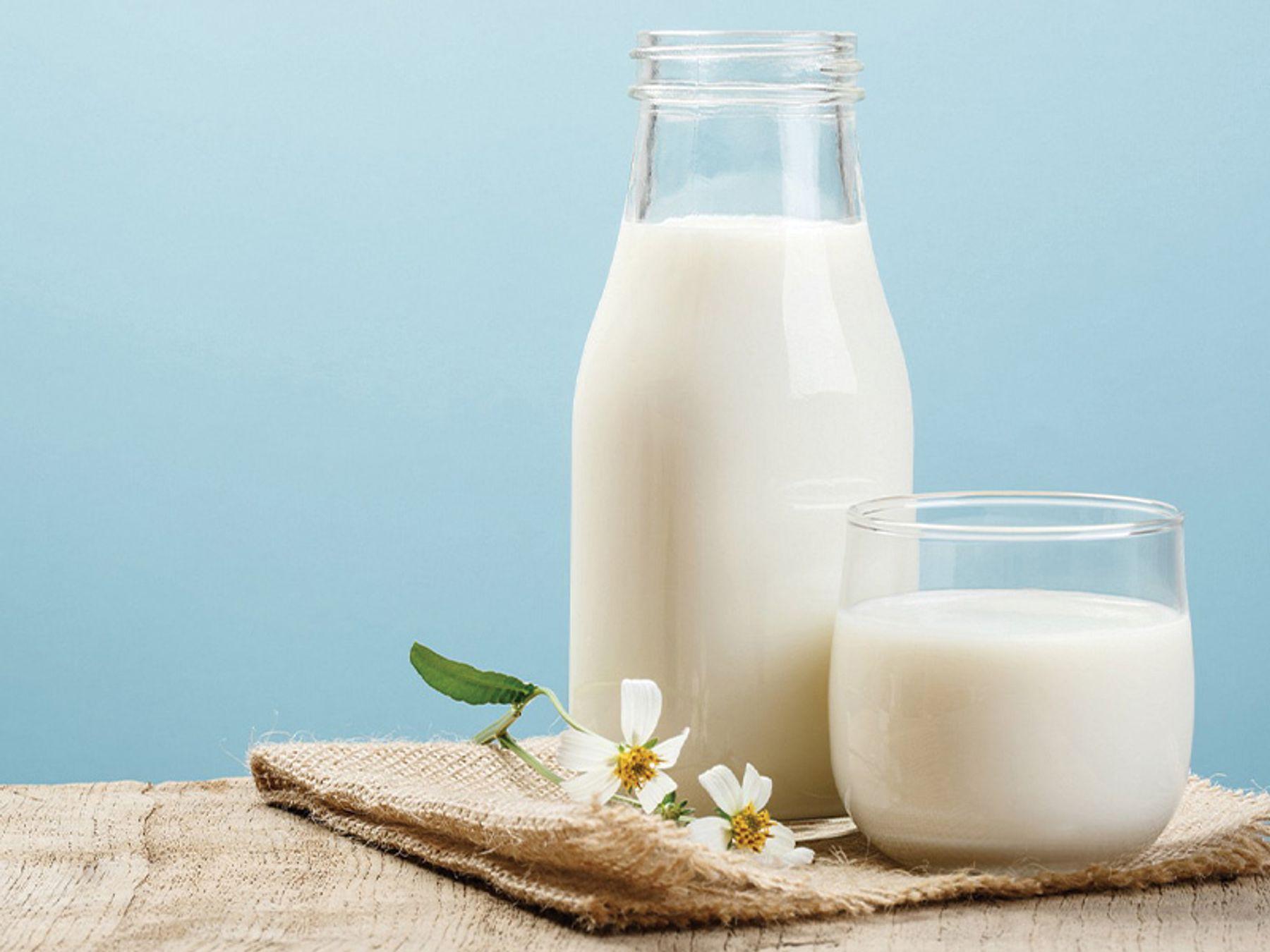 Cách tẩy vết mực trên áo bằng sữa tươi không đường